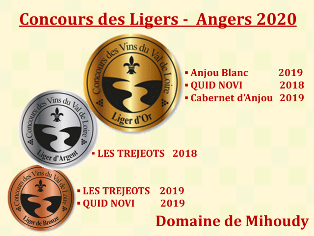 CDL Angers 2020